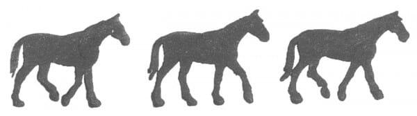 Dimensions Holzstempel - Drei Pferde
