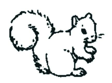 Perma Stempel Holzstempel - Eichhörnli