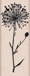 Hero Arts Holzstempel - Blume