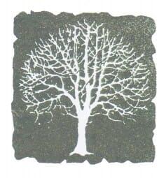 Perma Stempel Holzstempel - Baum (Design 2)