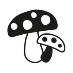 Stemplino Ministempel Pilze